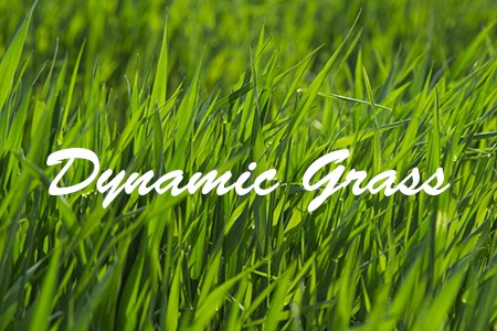 Dynamic Grass démo