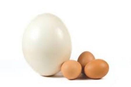 Eggclicker
