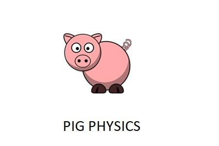 Pig Physics
